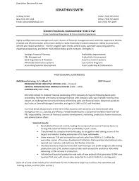 Resume Good Format Best Cfo Resume Format Cfo Resume Samples Word Financial