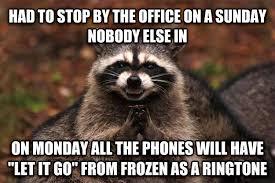 Meme Generator Raccoon - livememe com evil plotting raccoon