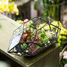 Large Planter Pot by Compare Prices On Large Planter Boxes Online Shopping Buy Low