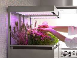 growing herbs indoors under lights herb pot by toyo kitchen detachable vegetable and herb planter that