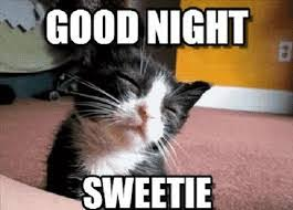 Goodnight Meme Cute - 100 free good night images for mobile download 111ideas