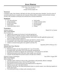 unforgettable salesperson resume examples to stand out best resume