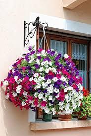 Hanging Flower Pot Hooks Amagabeli 11 U0027 U0027 Hanging Plant Hooks Forged Mount Against Door Fence