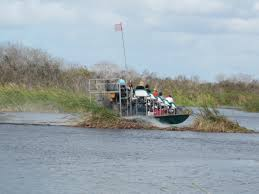 fan boat tours miami travel the florida everglades that emily