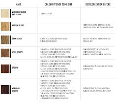 coloring rules u2013 how to dye your hair to get your dream color