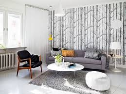 sofas wonderful best living room decorating ideas grey sofa for
