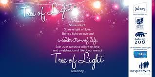 tree of light joburg