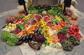 organic vegetable gardening u2013 home design and decorating