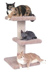 Modern Furniture Los Angeles Affordable by Cat Furniture Trees Towers Scratching Posts Petco You Me Bungalow