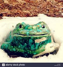 frog lawn ornament stock photo royalty free image 309818306 alamy