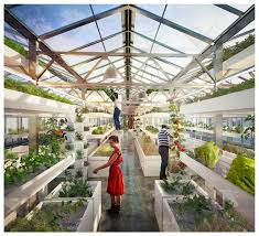 Urban Farm And Garden - generic architecture as strategic design for rooftop urban