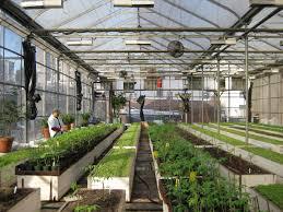 100 inside greenhouse ideas 21 cheap u0026 easy diy