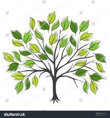 tree symbolism symbolic tree single leaves vector illustration stock vector