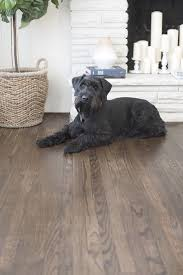 marvelous colors of hardwood floors floor stain color how to