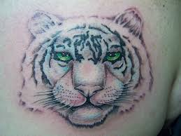 white tiger rochester ny design idea for and