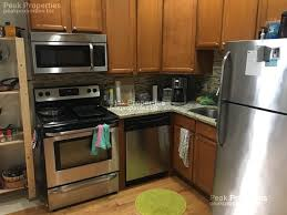 beautiful 1 bedroom apartments beautiful 1 bedroom apartment in nobel square rentals chicago il