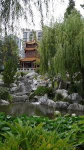 bamboo land nursery and parklands best 25 sydney gardens ideas on pinterest patio step ideas