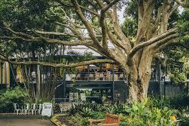 Sydney Botanic Gardens Restaurant Botanic Gardens Restaurant Sydney Venue