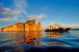 galapagos cruise deals rainforest cruises