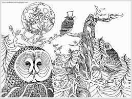 owl free printable coloring pages realistic 16125