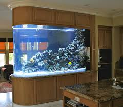 aquarium trendy fish tank room divider design for living room