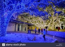 johnson city christmas lights johnson city usa 18 dec 2017 for the past 28 years johnson city