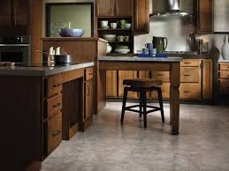 Kitchens Remodeling Ideas 30 Best Wheelchair Accessible Kitchens Images On Pinterest