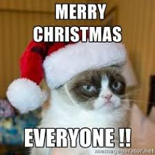 Funny Christmas Cat Memes - merry christmas cat meme festival collections