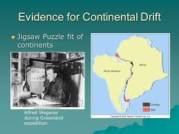 evidence continental drift ppt video download
