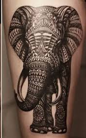 50 mind blowing african elephant tattoo art