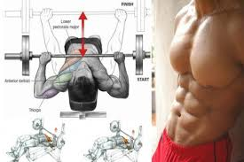 decline bench press muscles get a bigger chest with decline bench press be health and fit