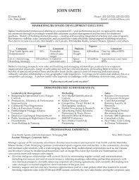 executive resume templates word executive resume template medicina bg info