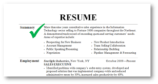 Resume Profile Template What To Put In A Resume Profile Resume For Your Job Application