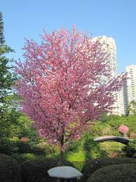 artificial cherry blossom trees garden decorative tree with many