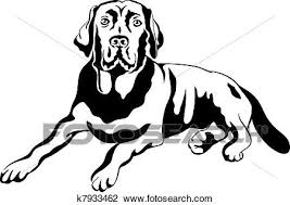 clipart of vector sketch dog breed labrador retrievers k7933462