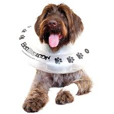 amazon com boobooloon inflatable pet recovery collar 1 medium
