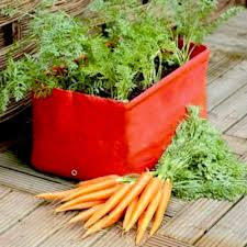vegetables u2013 container gardening