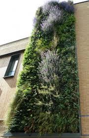 Internet Status Walled Garden by 181 Best Vertical Gardens Images On Pinterest Vertical Gardens