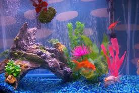 how to make fish tank decorations at home Fish Tank Decorations