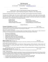 sales profile resume sample 48 best best executive resume templates samples images on executive level resume samples inspiration decoration executive level resume samples