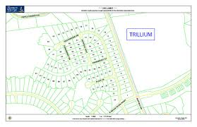 trillium new homes clayton nc