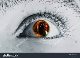 male eye color lens effect snake stock photo 102434143 shutterstock