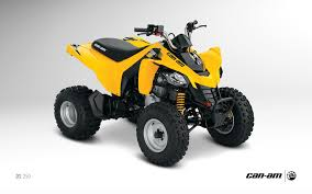 2013 can am ds 250 an entry level sport atv autoevolution
