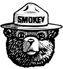 Smokey The Bear Meme Generator - the smokey bear blank template imgflip