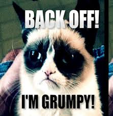 Back Off Meme - back off i m grumpy grumpy cat know your meme