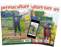 vegetables to grow in winter a how to guide permaculture magazine