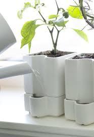 planters amusing self watering plant pots lechuza planters self