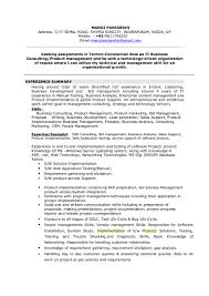 Consulting Resume Example Implementation Consultant Resume Free Resume Example And Writing