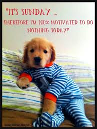 Its Sunday Meme - it s sunday lets do nothing pictures photos and images for