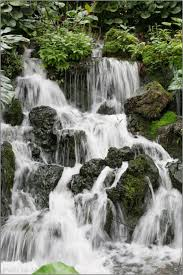 Botanical Gardens In Singapore by Waterfalls At Botanical Gardens In Singapore Traveldudes Org